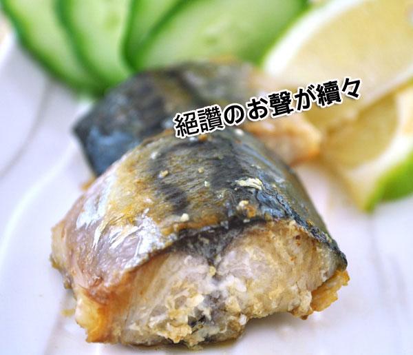 薄鹽青花魚