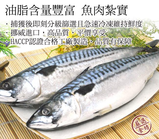 薄鹽挪威鯖魚
